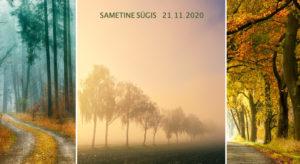 Sametine sügis 21-11-2020